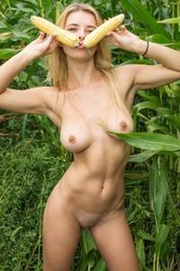 Stunning blondie Yelena expose her tight pale body in the cornfield