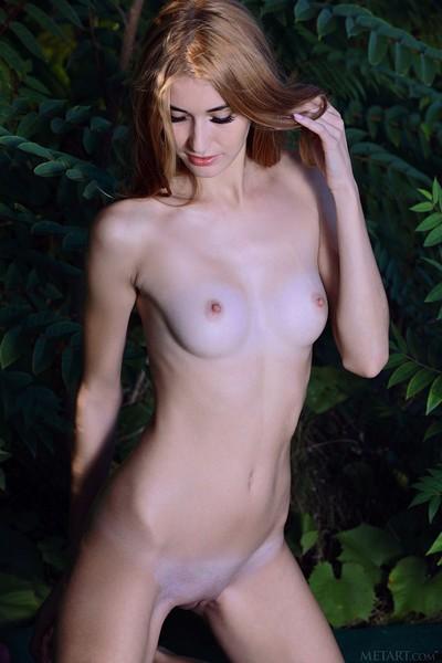 Aileen in Svelte Beauty from Met Art